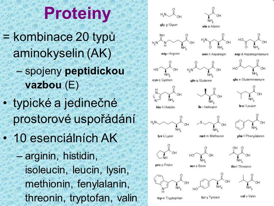 Proteiny = kombinace 20 typů aminokyselin (AK)