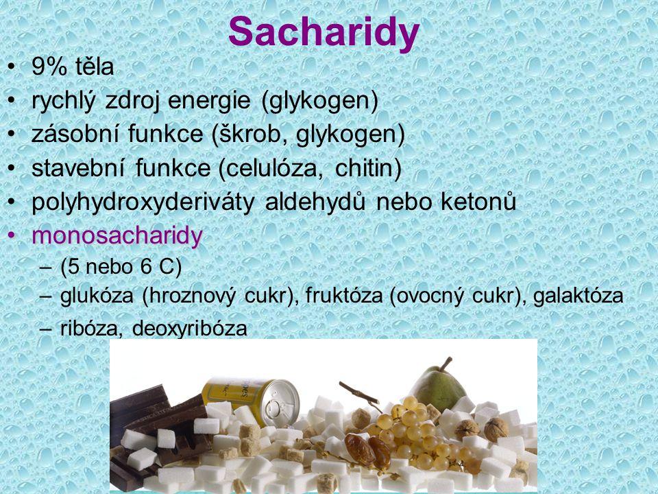 Sacharidy 9% těla rychlý zdroj energie (glykogen)