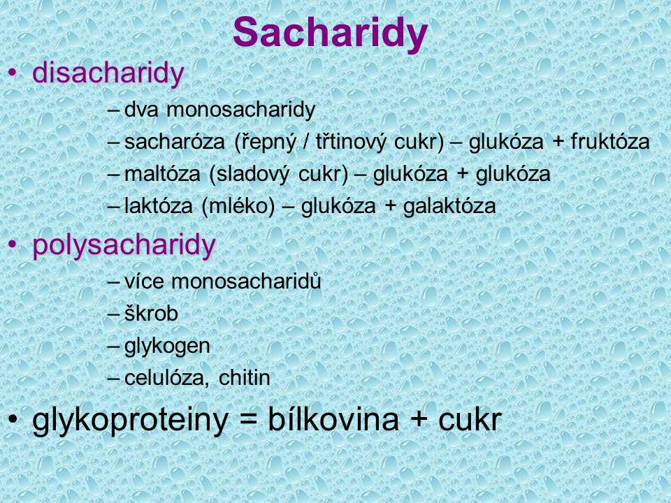 Sacharidy glykoproteiny = bílkovina + cukr disacharidy polysacharidy