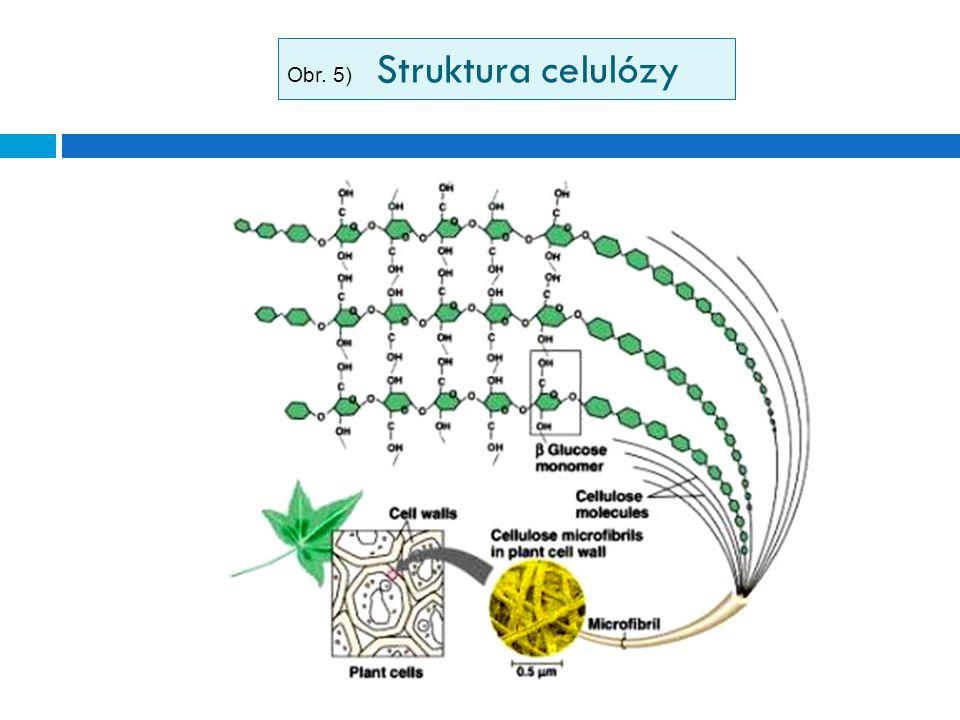 Obr. 5) Struktura celulózy