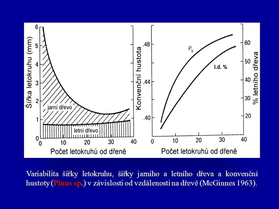 Variabilita šířky letokruhu, šířky jarního a letního dřeva a konvenční hustoty (Pinus sp.) v závislosti od vzdálenosti na dřevě (McGinnes 1963).