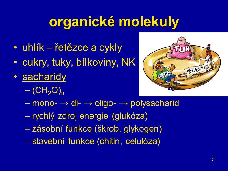 organické molekuly uhlík – řetězce a cykly cukry, tuky, bílkoviny, NK