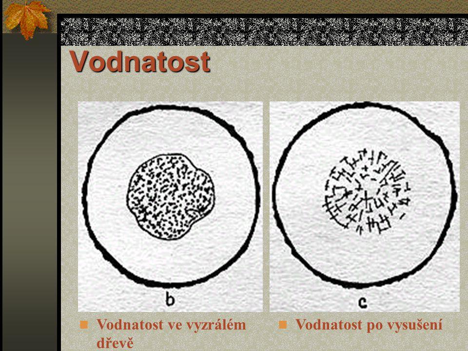 Vodnatost Vodnatost ve vyzrálém dřevě Vodnatost po vysušení