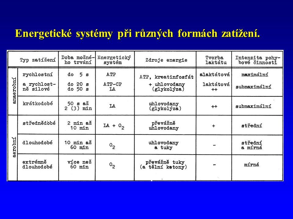 Energetické systémy při různých formách zatížení.
