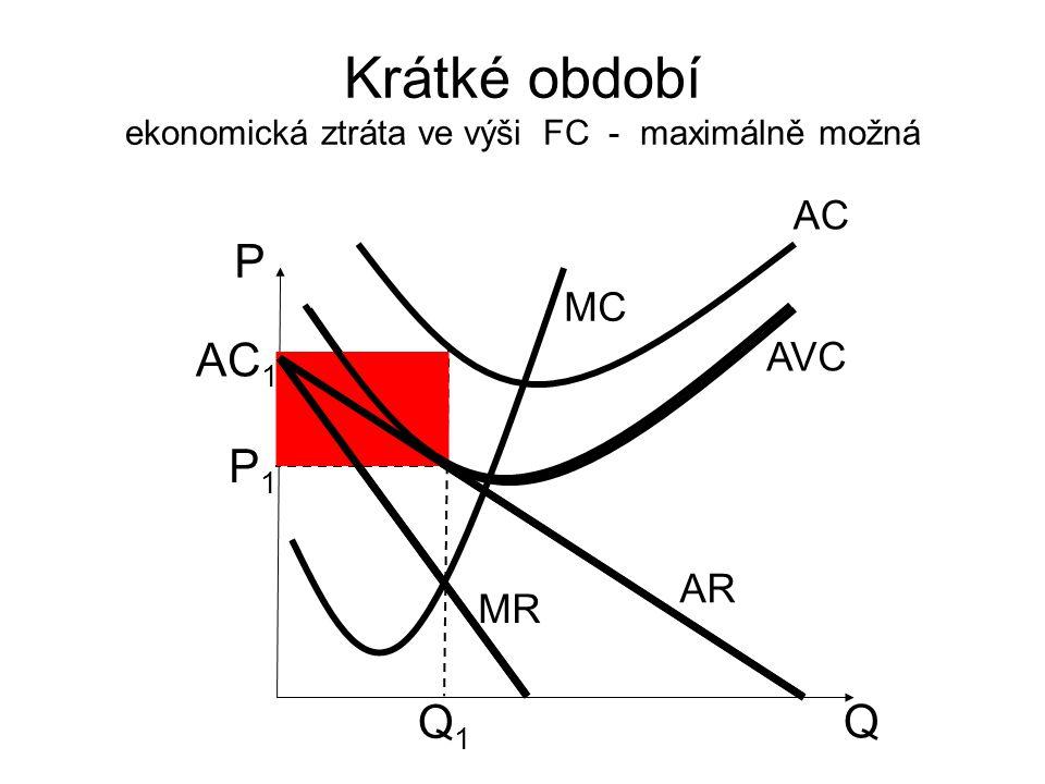 Krátké období ekonomická ztráta ve výši FC - maximálně možná