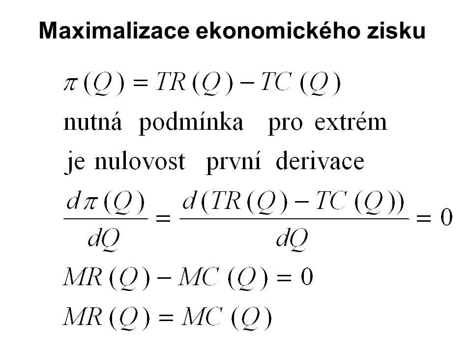 Maximalizace ekonomického zisku