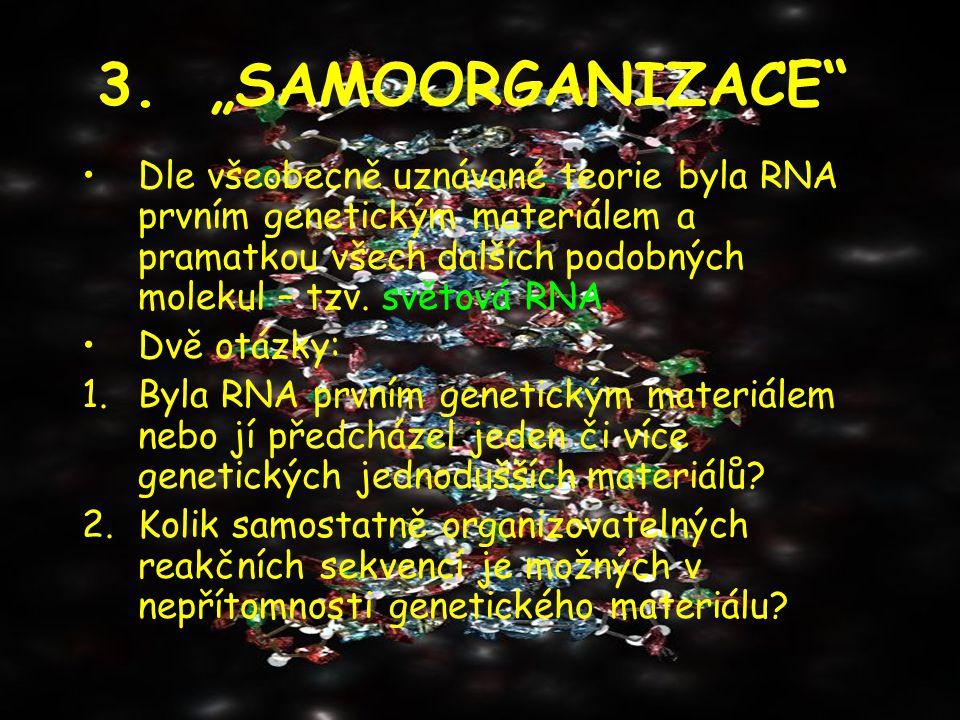 "3. ""SAMOORGANIZACE"