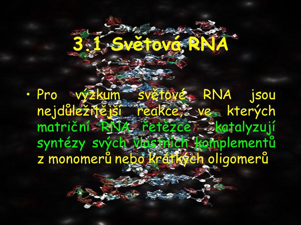 3.1 Světová RNA