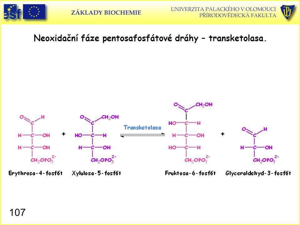 Neoxidační fáze pentosafosfátové dráhy – transketolasa.