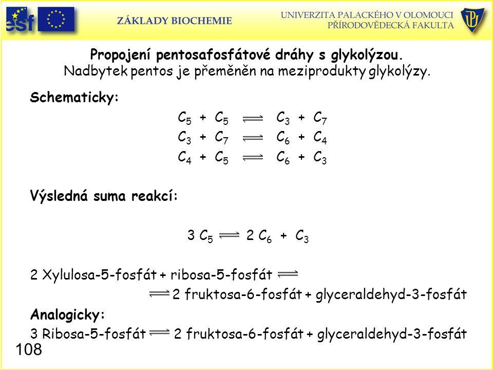 2 Xylulosa-5-fosfát + ribosa-5-fosfát
