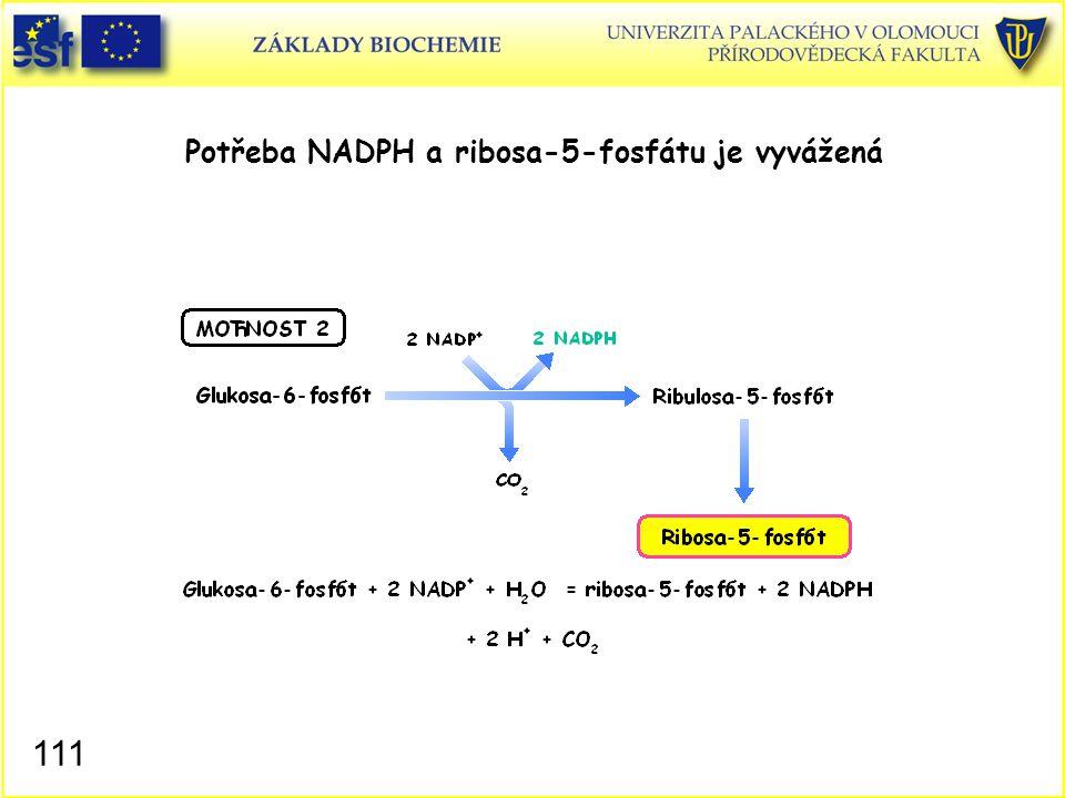 Potřeba NADPH a ribosa-5-fosfátu je vyvážená