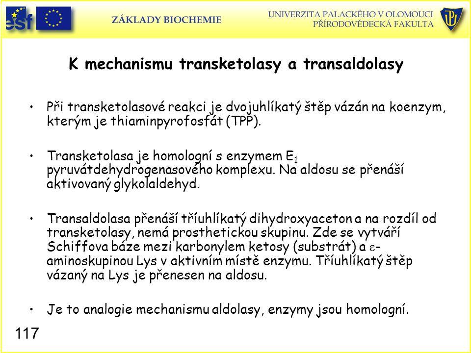 K mechanismu transketolasy a transaldolasy