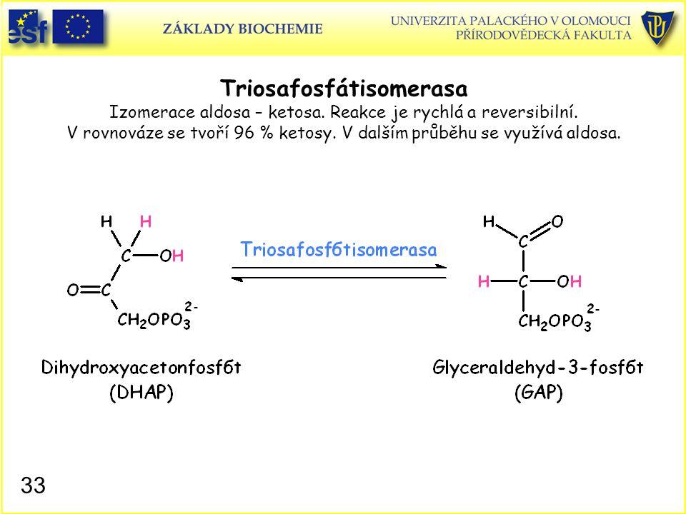 Triosafosfátisomerasa Izomerace aldosa – ketosa