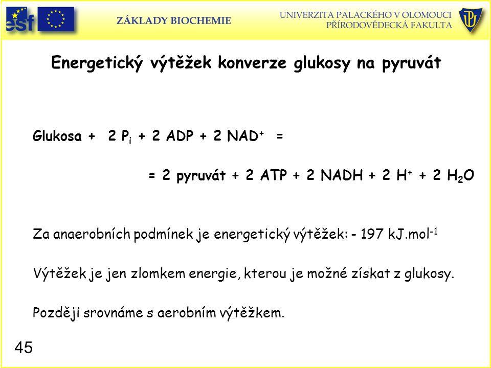 Energetický výtěžek konverze glukosy na pyruvát