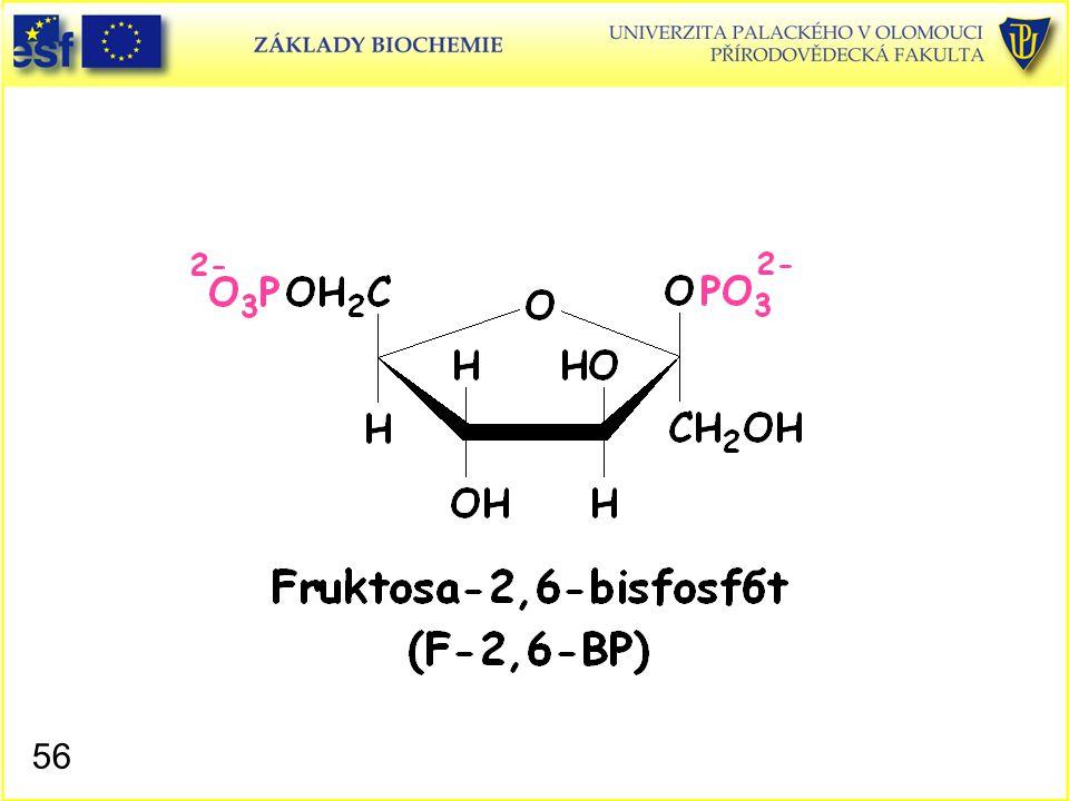Fruktosa-2,6-bisfosfát