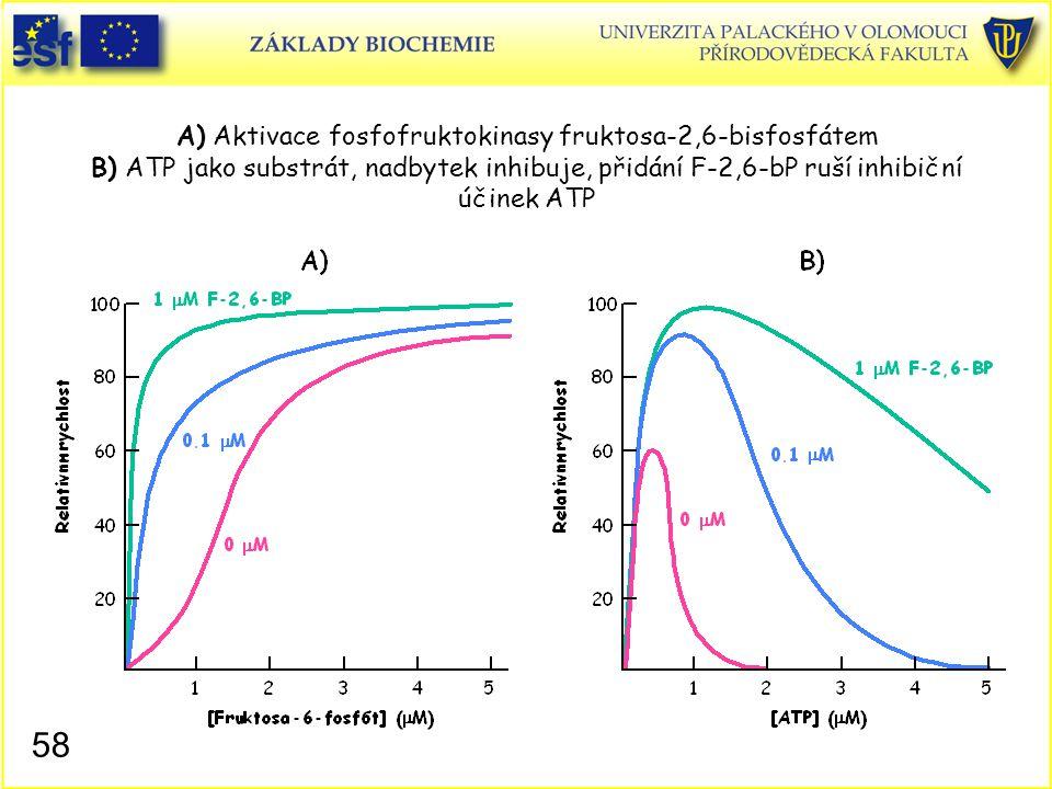 A) Aktivace fosfofruktokinasy fruktosa-2,6-bisfosfátem B) ATP jako substrát, nadbytek inhibuje, přidání F-2,6-bP ruší inhibiční účinek ATP