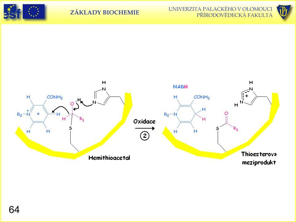 Glyceraldehyd-3-fosfátdehydrogenasa, mechanismus působení 3