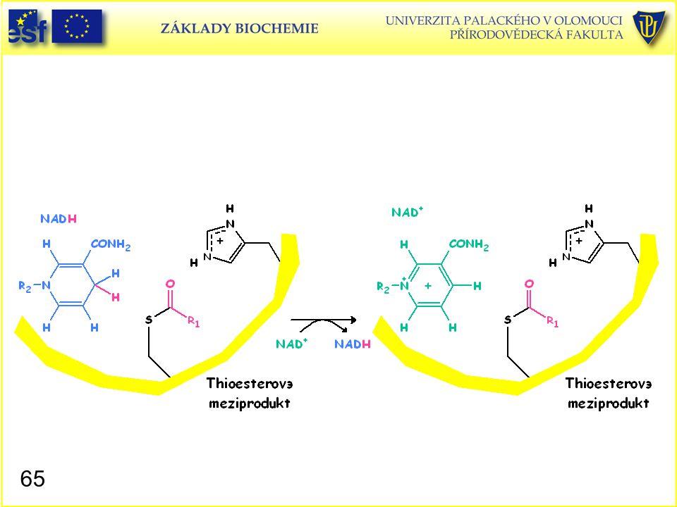 Glyceraldehyd-3-fosfátdehydrogenasa, mechanismus působení 4
