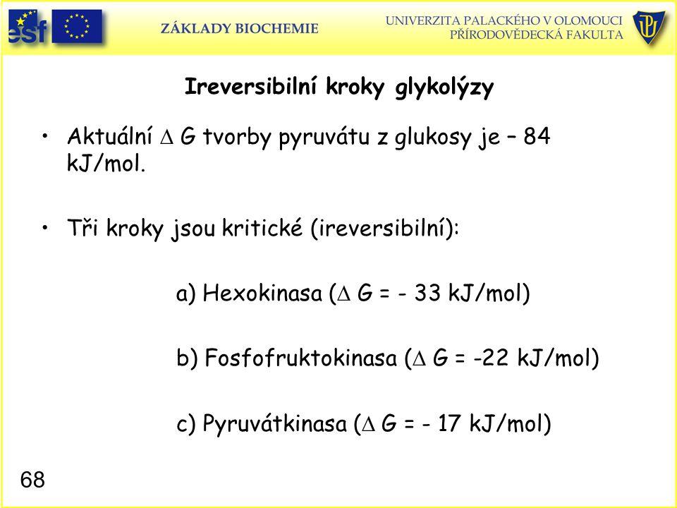 Ireversibilní kroky glykolýzy