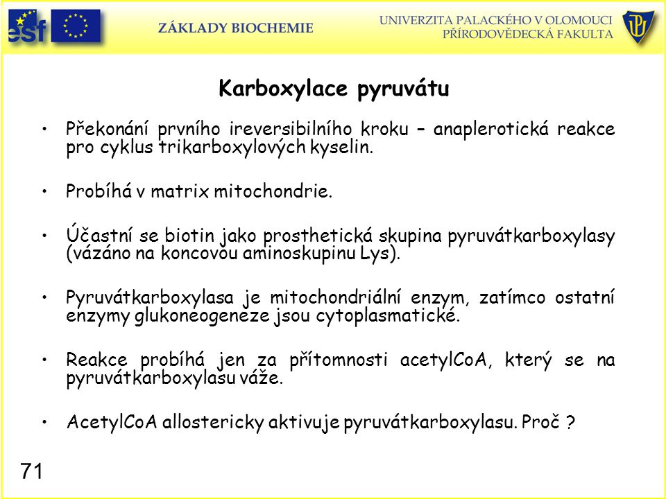 Karboxylace pyruvátu Překonání prvního ireversibilního kroku – anaplerotická reakce pro cyklus trikarboxylových kyselin.
