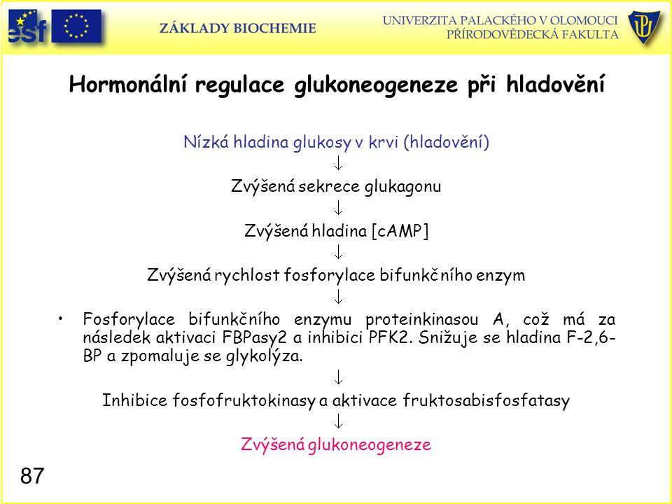 Hormonální regulace glukoneogeneze při hladovění