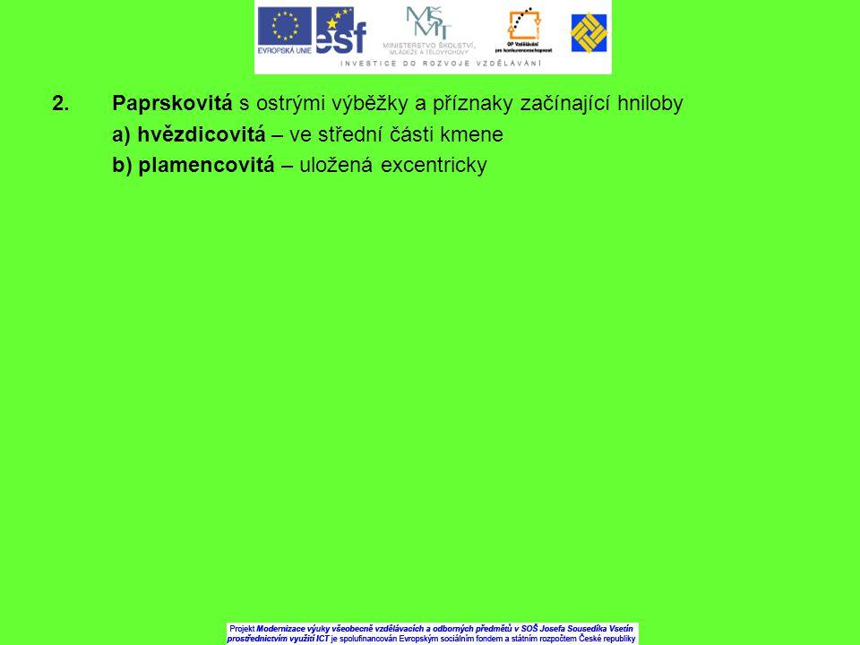 2. Paprskovitá s ostrými výběžky a příznaky začínající hniloby