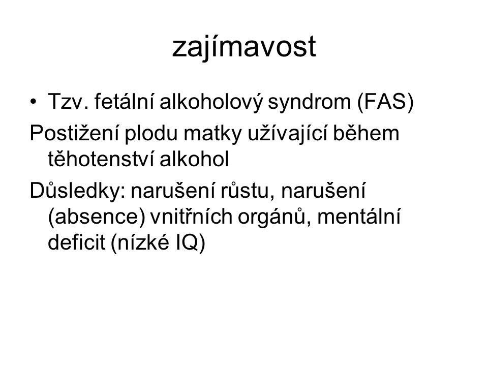 zajímavost Tzv. fetální alkoholový syndrom (FAS)