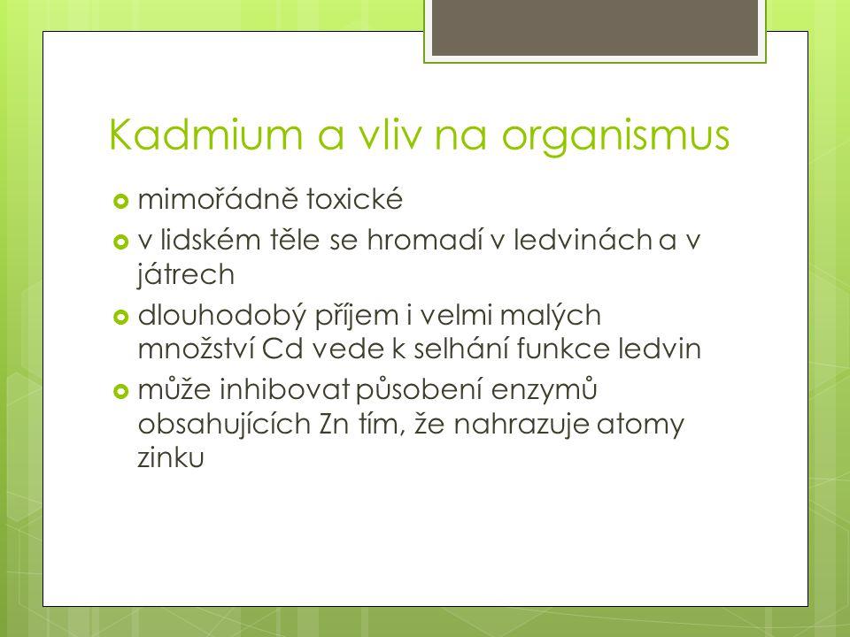 Kadmium a vliv na organismus