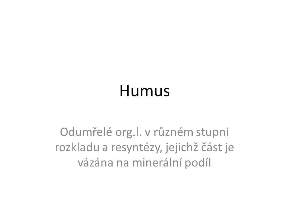 Humus Odumřelé org.l.
