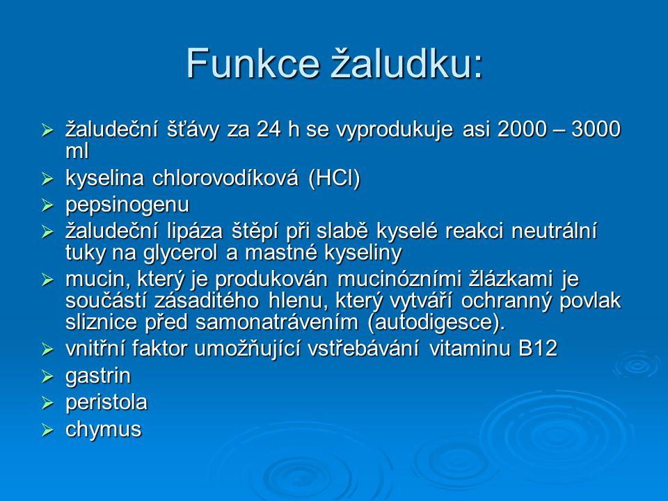 Funkce žaludku: žaludeční šťávy za 24 h se vyprodukuje asi 2000 – 3000 ml. kyselina chlorovodíková (HCl)