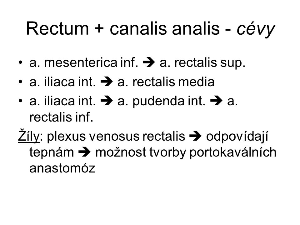 Rectum + canalis analis - cévy
