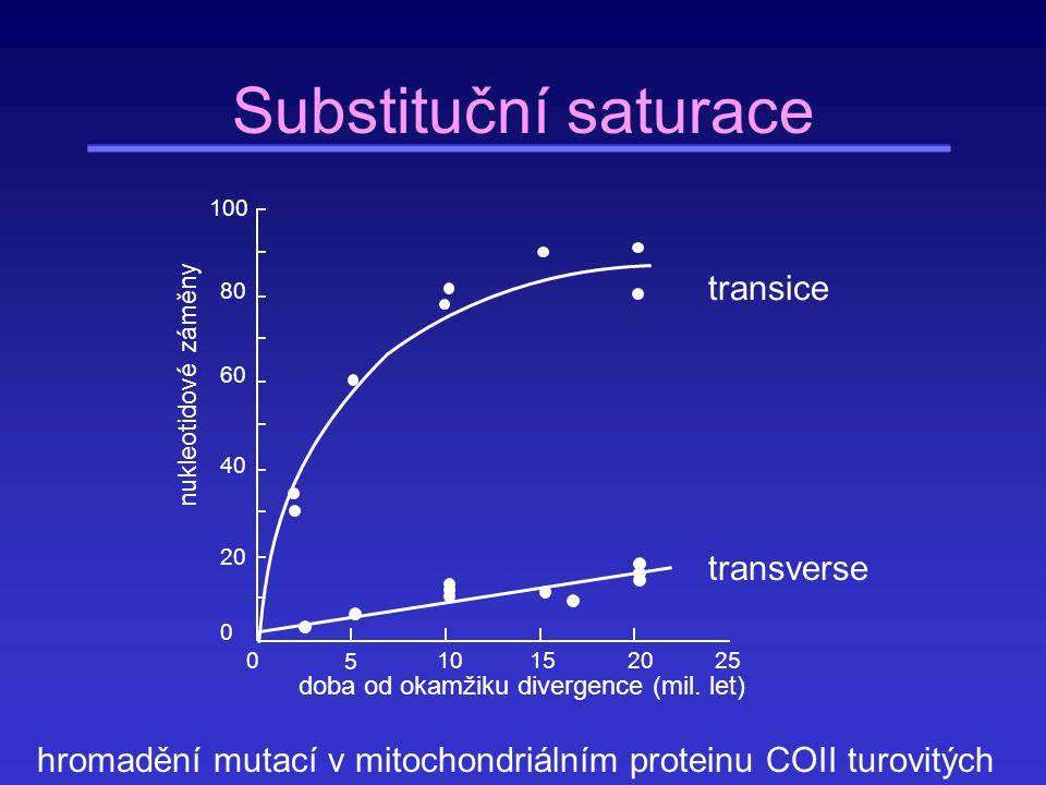 Substituční saturace transice transverse