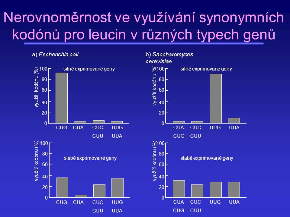 Nerovnoměrnost ve využívání synonymních kodónů pro leucin v různých typech genů