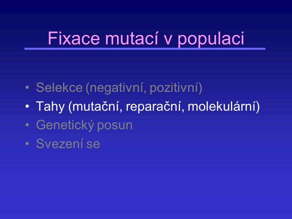 Fixace mutací v populaci