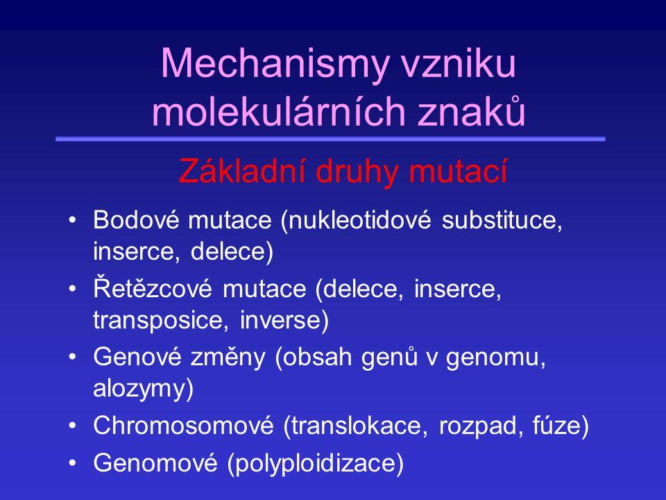 Mechanismy vzniku molekulárních znaků