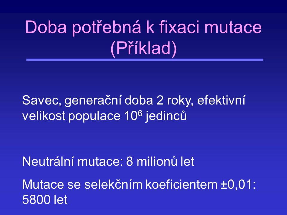 Doba potřebná k fixaci mutace (Příklad)