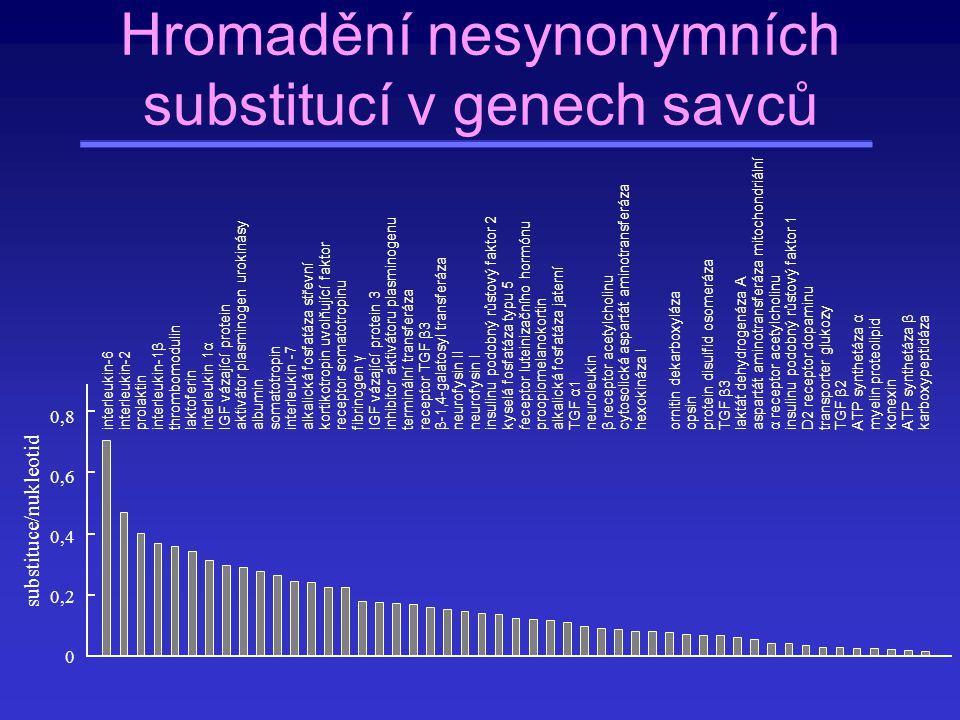 Hromadění nesynonymních substitucí v genech savců
