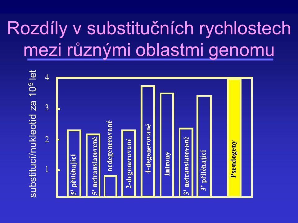 Rozdíly v substitučních rychlostech mezi různými oblastmi genomu
