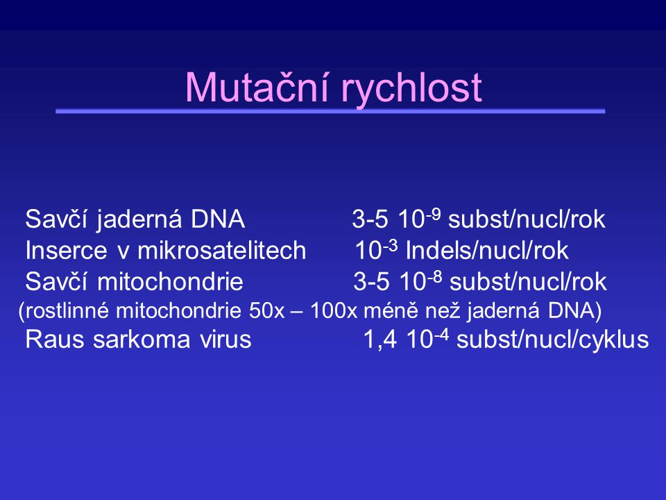 Mutační rychlost Savčí jaderná DNA 3-5 10-9 subst/nucl/rok