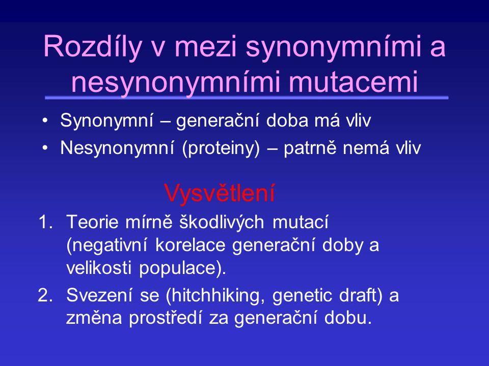 Rozdíly v mezi synonymními a nesynonymními mutacemi