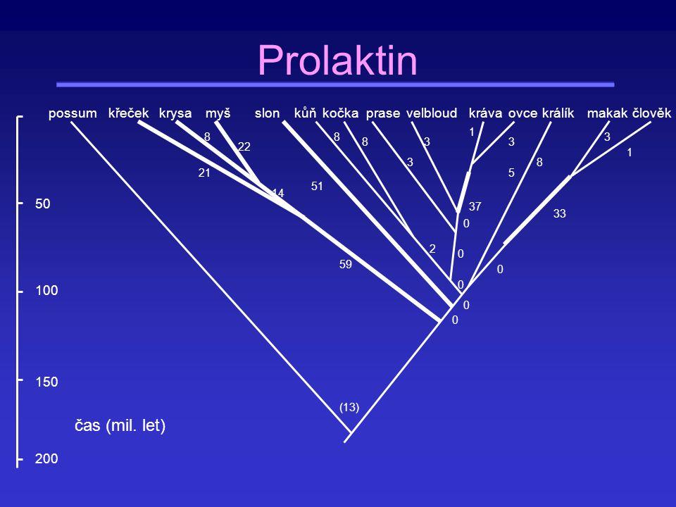 Prolaktin čas (mil. let) possum myš slon kůň kočka prase velbloud