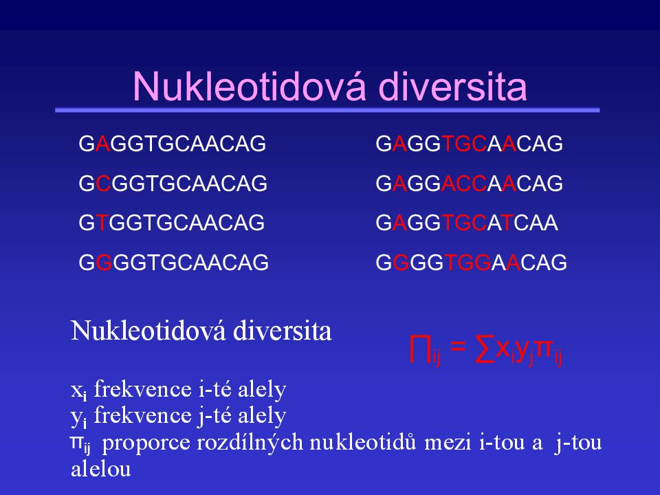 Nukleotidová diversita
