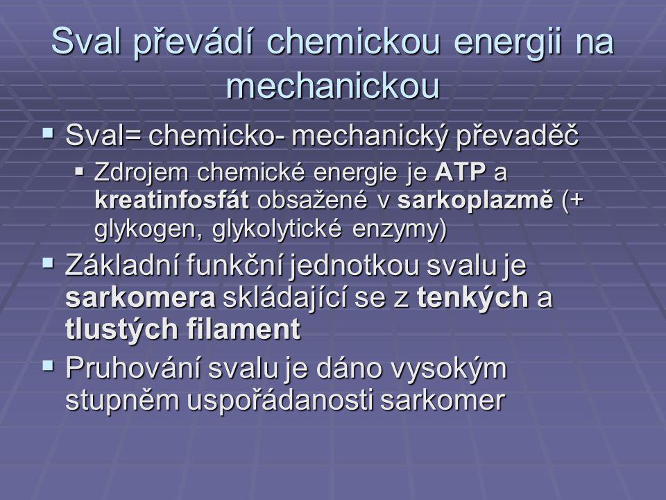 Sval převádí chemickou energii na mechanickou