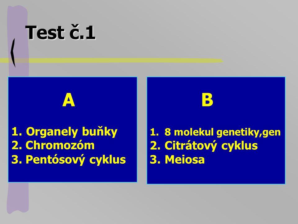 Test č.1 A Organely buňky 2. Chromozóm 3. Pentósový cyklus B