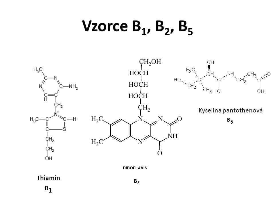 Vzorce B1, B2, B5 Kyselina pantothenová B5 B2 Thiamin B1