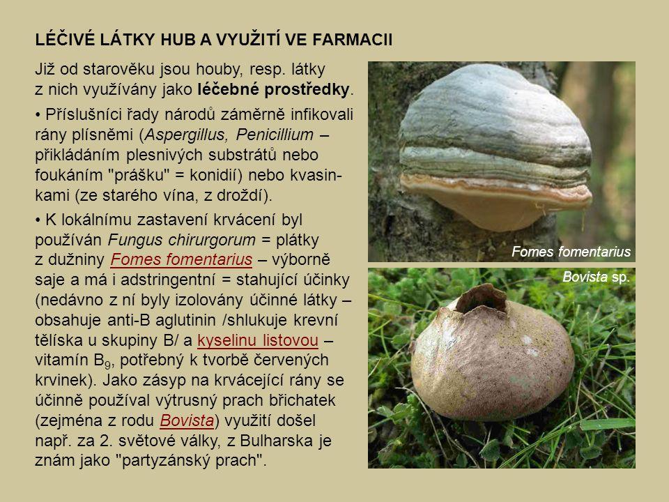 LÉČIVÉ LÁTKY HUB A VYUŽITÍ VE FARMACII