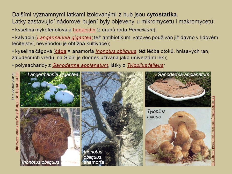 Dalšími významnými látkami izolovanými z hub jsou cytostatika