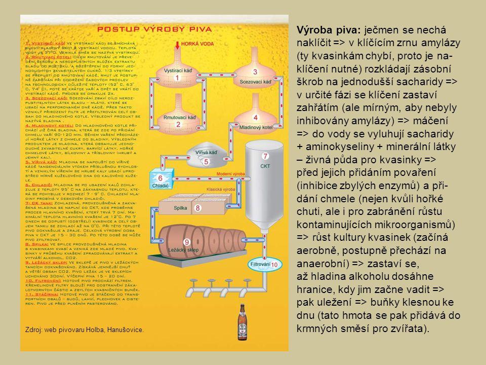 Výroba piva: ječmen se nechá naklíčit => v klíčícím zrnu amylázy (ty kvasinkám chybí, proto je na-klíčení nutné) rozkládají zásobní škrob na jednodušší sacharidy => v určité fázi se klíčení zastaví zahřátím (ale mírným, aby nebyly inhibovány amylázy) => máčení => do vody se vyluhují sacharidy + aminokyseliny + minerální látky – živná půda pro kvasinky => před jejich přidáním povaření (inhibice zbylých enzymů) a při-dání chmele (nejen kvůli hořké chuti, ale i pro zabránění růstu kontaminujících mikroorganismů) => růst kultury kvasinek (začíná aerobně, postupně přechází na anaerobní) => zastaví se, až hladina alkoholu dosáhne hranice, kdy jim začne vadit => pak uležení => buňky klesnou ke dnu (tato hmota se pak přidává do krmných směsí pro zvířata).