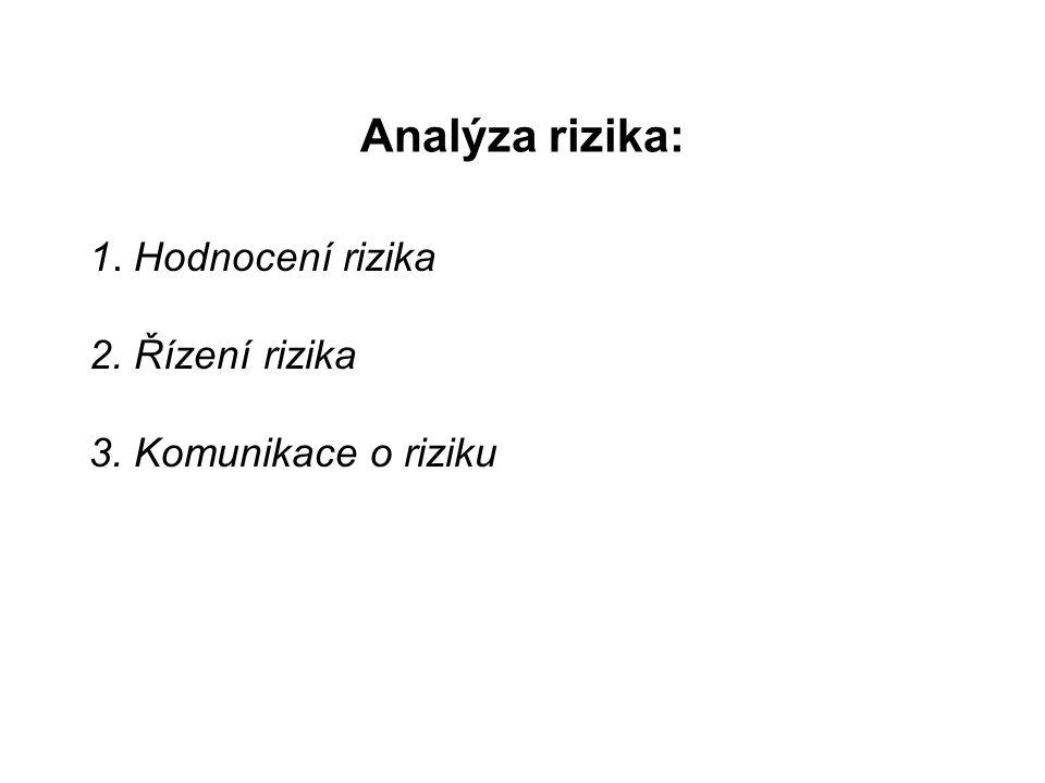 Analýza rizika: 1. Hodnocení rizika 2. Řízení rizika