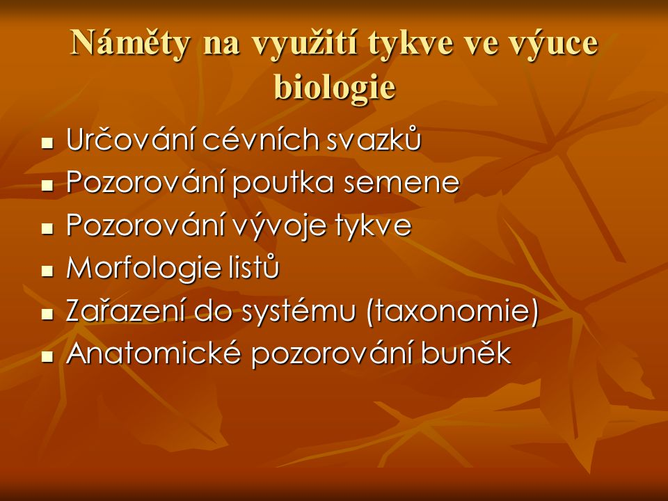 Náměty na využití tykve ve výuce biologie